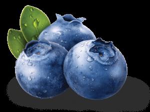 blueberries health fruit image