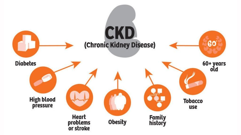 chronic kidney disease causes image