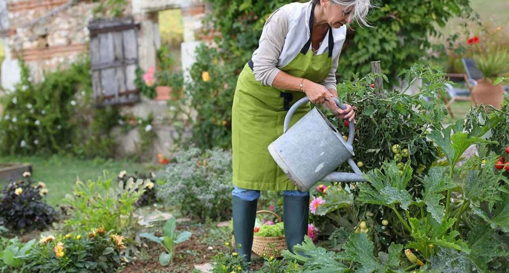 gardening can overcome depression image