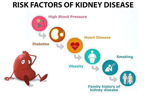 chronic kidny disease risk factors