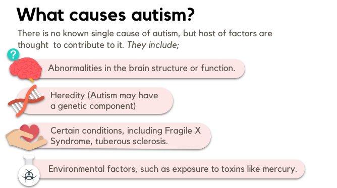 autism causes image